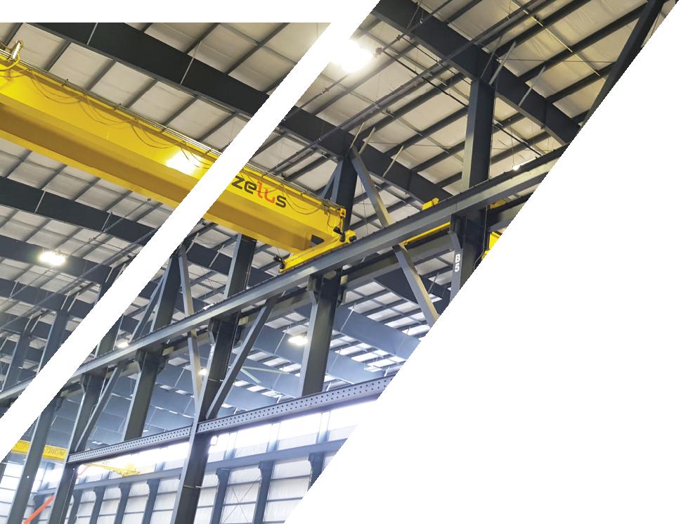 over head crane Zelus